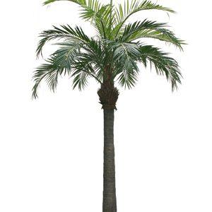 330cm Palm Tree