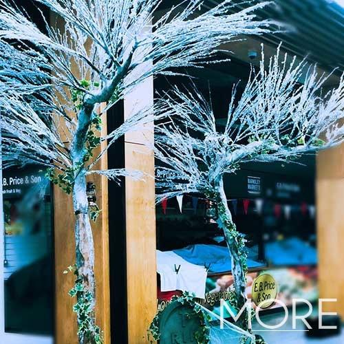 Frozen Canopy Tree