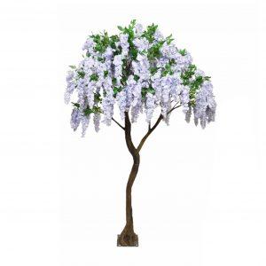 3m Lilac Wisteria Tree
