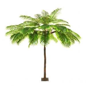 4m Palm Tree