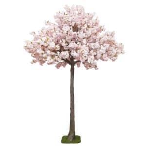 4m Pink Blossom Tree