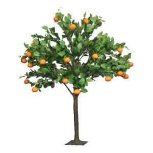 6ft Orange Tree