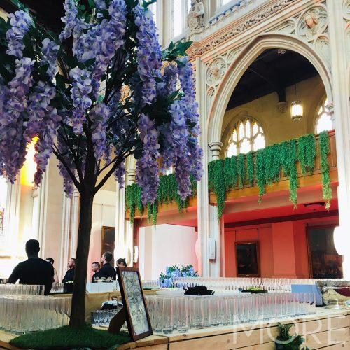 6ft Lilac Wisteria Tree