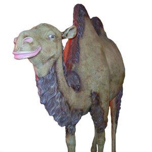 Camel Prop