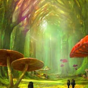 Magical Forest Backdrop