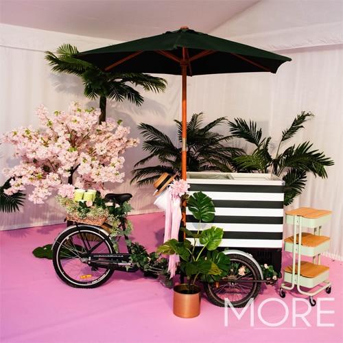 6ft Pink Blossom Tree