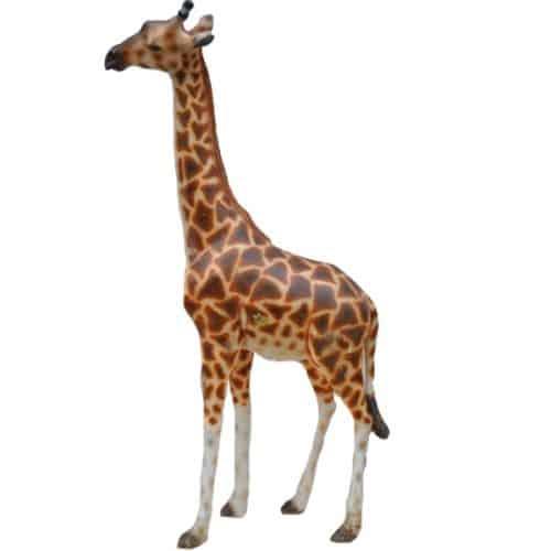 Junior Giraffe Prop
