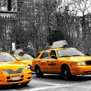 New York Yellow Cab Backdrop