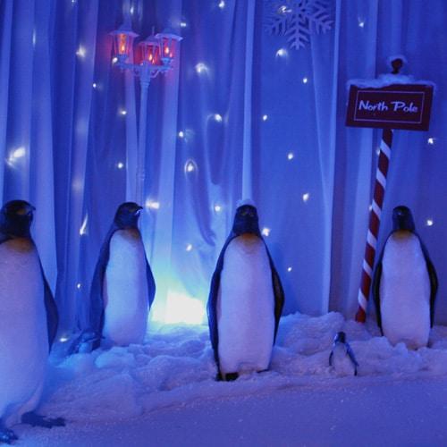 Large Penguin Prop