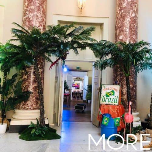3.2m Canopy Palm Tree