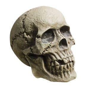 Polystyrene Skull