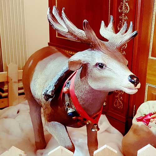 Reindeer With Short Antler
