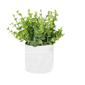 Individual Herb