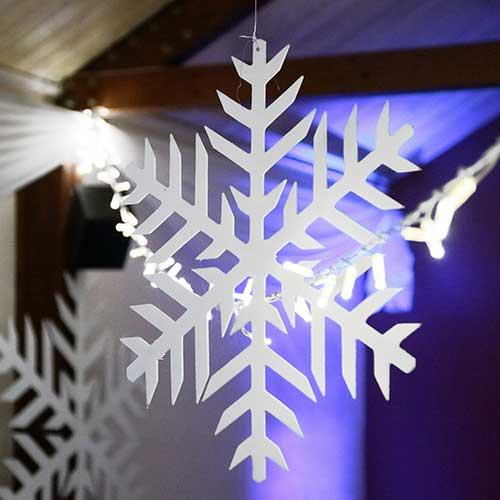 2d Snowflakes 50cm