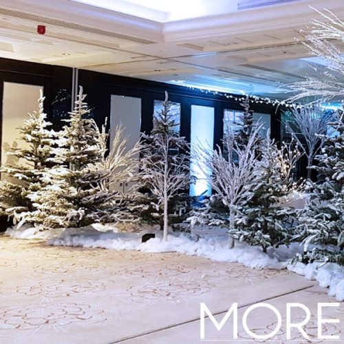 10ft Snow Flocked Fir Tree