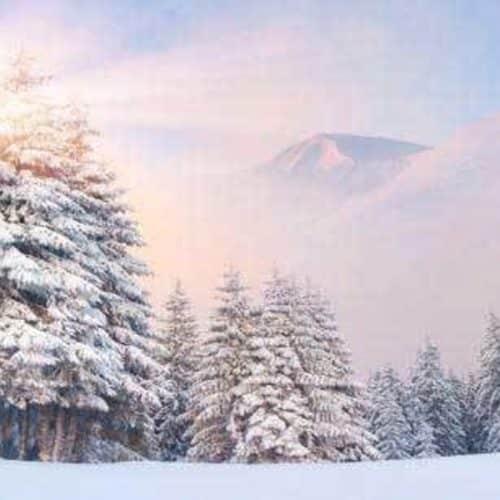 Snowy Mountain Backdrop