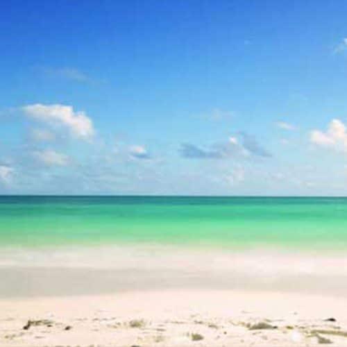 White Sands Beach Backdrop