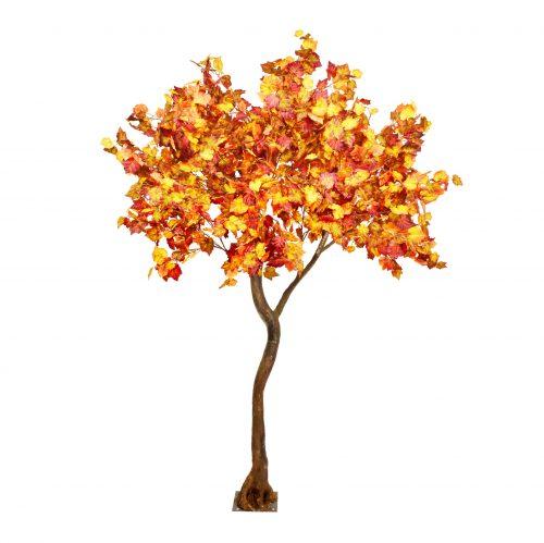 3m Autumn Tree