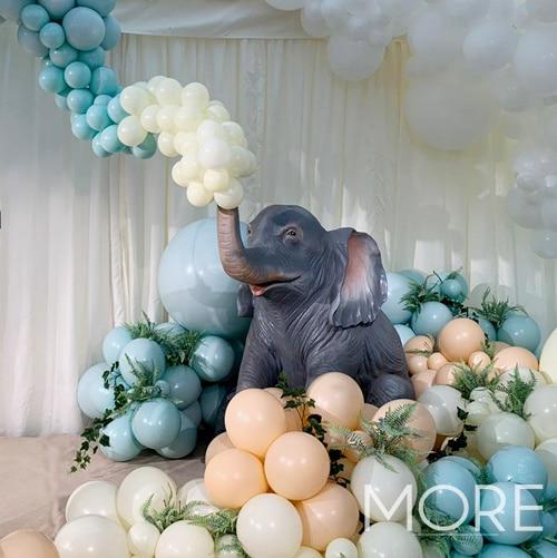 Baby Elephant Sitting