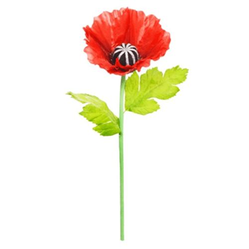 Over-sized Red Poppy Stem