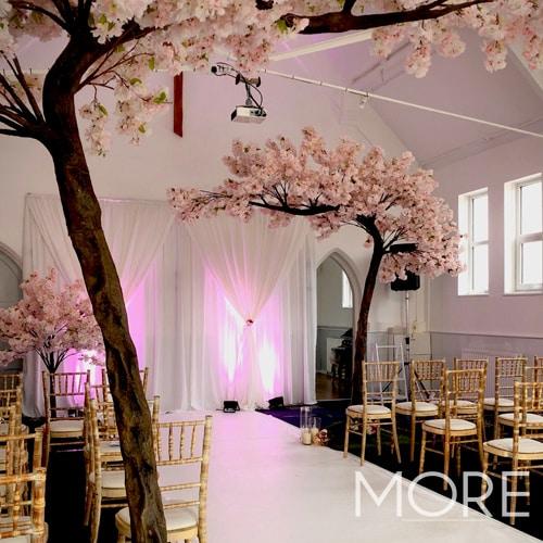 3.2m Canopy Pink Blossom Tree