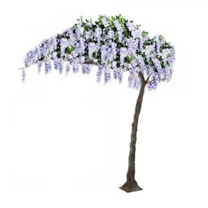 3.2m Lilac Canopy Wisteria Tree